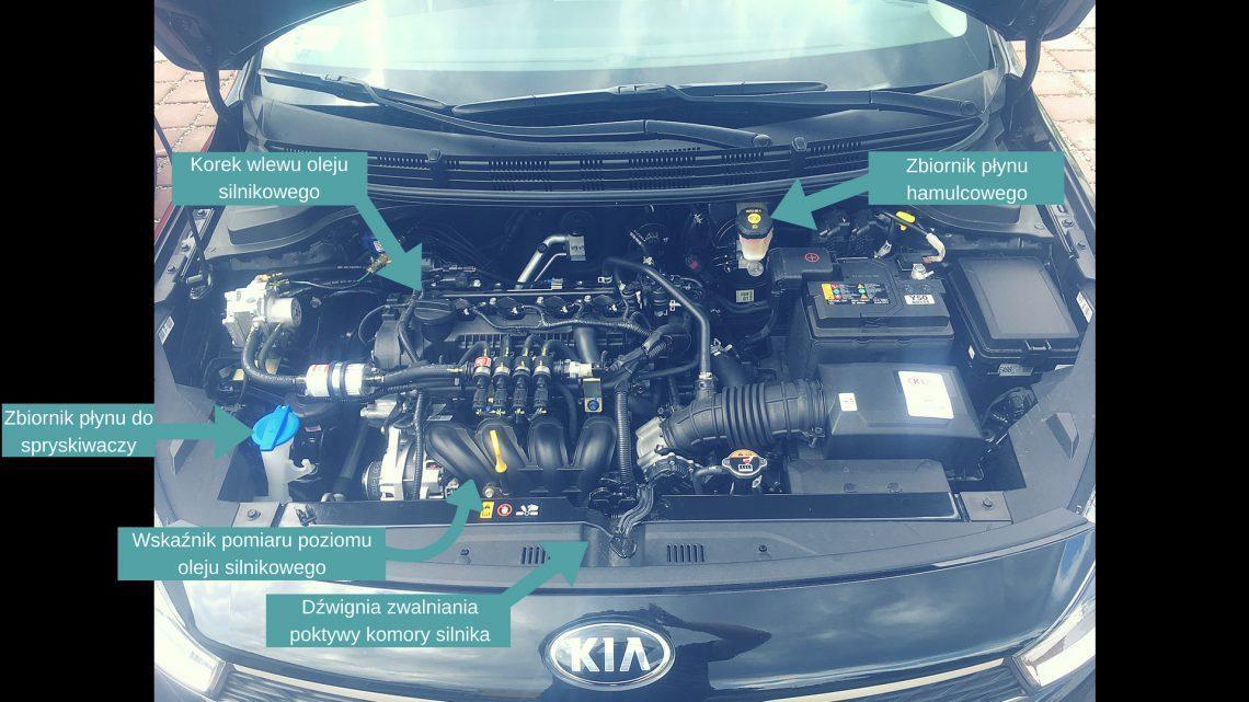 Obsługa techniczna pod maską i podstawowe elementy wewnątrz pojazdu